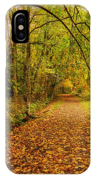 IPhone Case featuring the photograph Autumn Walk by Bob Cournoyer