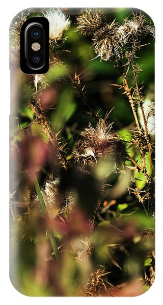 IPhone Case featuring the photograph Autumn Weeds by Edward Peterson