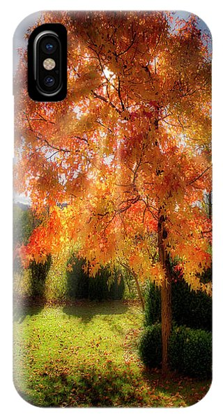 IPhone Case featuring the photograph Autumnal Glory by Edmund Nagele