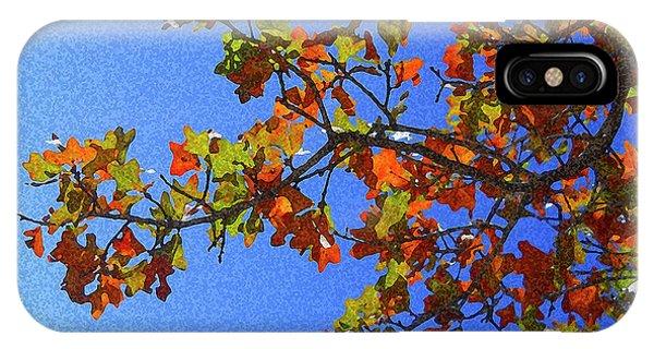 Autumn's Colors IPhone Case