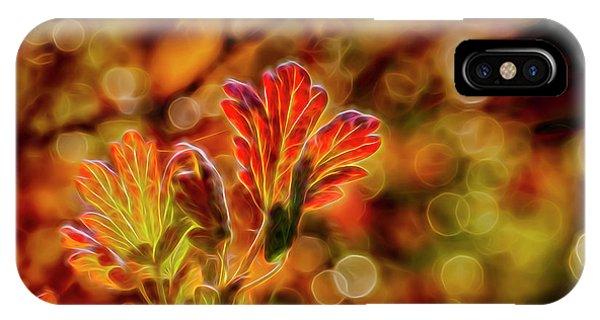 Fall Colors iPhone Case - Autumn's Glow 2 by Veikko Suikkanen