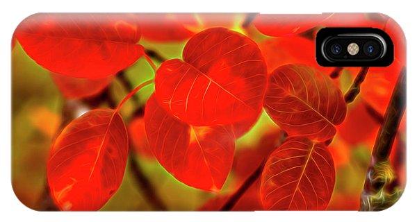 Fall Colors iPhone Case - Autumn's Glow by Veikko Suikkanen