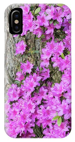 Azalea Blooms Phone Case by William Sutton