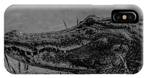 B And W Gator IPhone Case