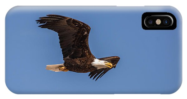 IPhone Case featuring the photograph B8 by Joshua Able's Wildlife