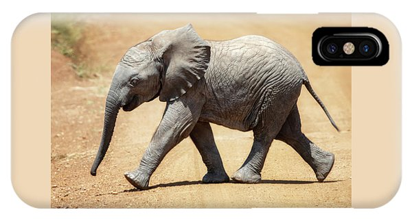 iPhone Case - Baby African Elephant by Jane Rix