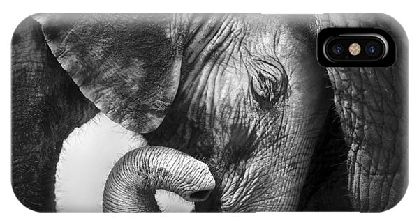 Young iPhone Case - Baby Elephant Seeking Comfort Against by Johan Swanepoel