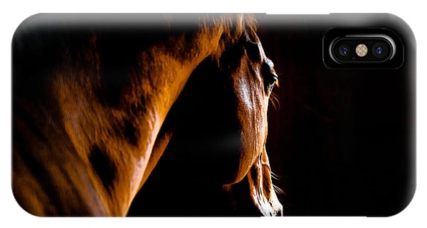 Background iPhone Case - Back Shot Of A Horse by Makieni