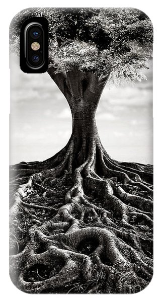 Mono iPhone Case - Back To The Roots by Evelina Kremsdorf