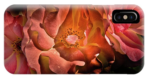 IPhone Case featuring the photograph Backyard Flowers 40 Color Version by Brian Carson