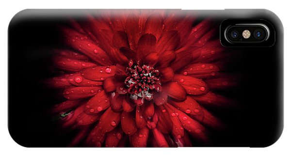 IPhone Case featuring the photograph Backyard Flowers 45 Color Flow Version by Brian Carson