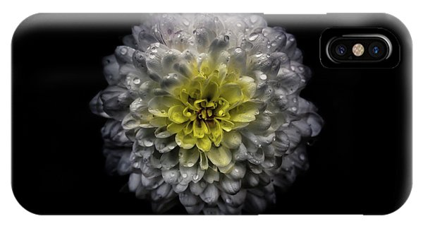 IPhone Case featuring the photograph Backyard Flowers 46 Color Version by Brian Carson