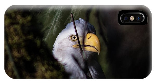 Bald Eagle Behind Tree IPhone Case
