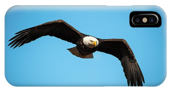 IPhone Case featuring the photograph Bald Eagle In Flight  by Jeff Phillippi