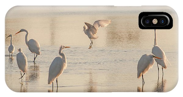 Ballet Of The Egrets IPhone Case