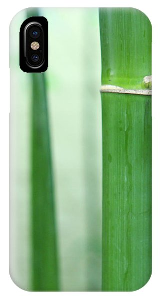 Bamboo 0312 IPhone Case