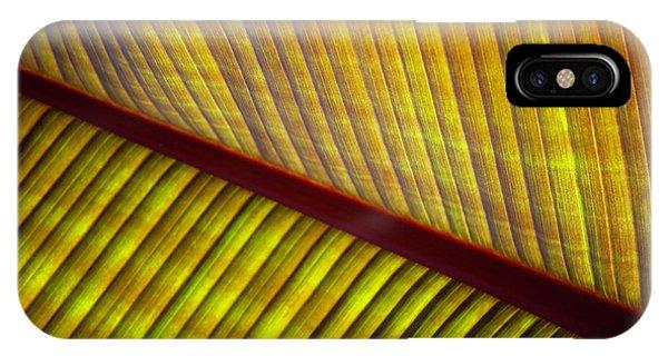 Banana Leaf 8602 IPhone Case