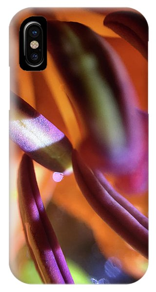 Banana Splitsville IPhone Case