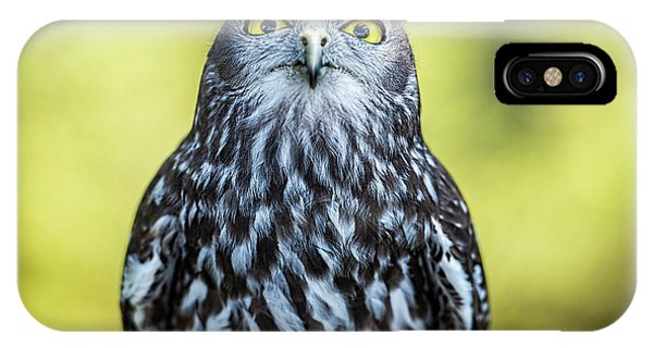 IPhone Case featuring the photograph Barking Owl by Rob D Imagery