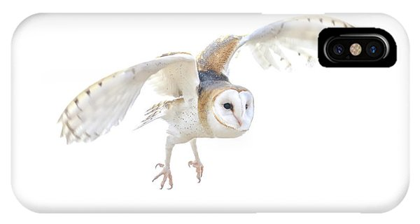 Barn Owl In Flight IPhone Case