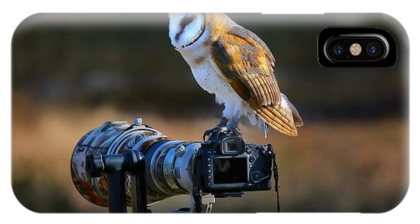 Flight iPhone Case - Barn Owl Tyto Alba Sitting On A Camera by Don Mammoser