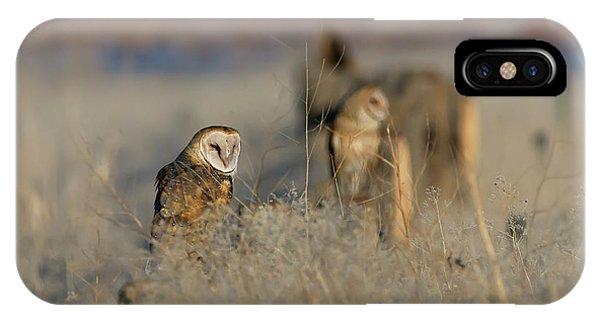 Barn Owls 9 IPhone Case