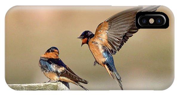Barn Swallow Conversation IPhone Case