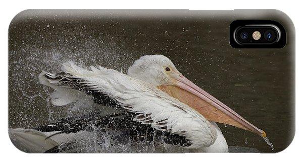 Bathing Pelican IPhone Case