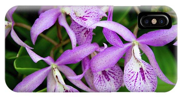 Bc Maikai 'louise' Orchid IPhone Case