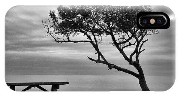 Beach Tree IPhone Case