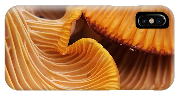 Eating iPhone Case - Beautiful And Very Bright, Orange by Vladimir Salman