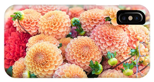 Bouquet iPhone Case - Beautiful Dahlia Flowers For Sale At by Anna Hoychuk