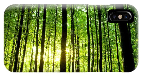 Lush iPhone Case - Beautiful Green Forest by Ruslan Ivantsov