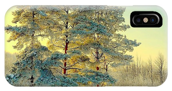 Beautiful Landscape With Winter Forest Phone Case by Deserg