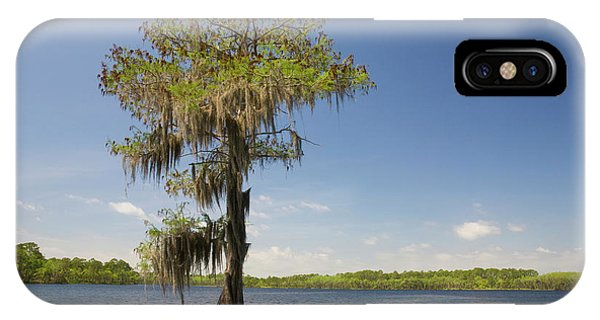 Wakulla iPhone Case - Beautiful Lone Cypress Tree In The Lake by Felix Lai