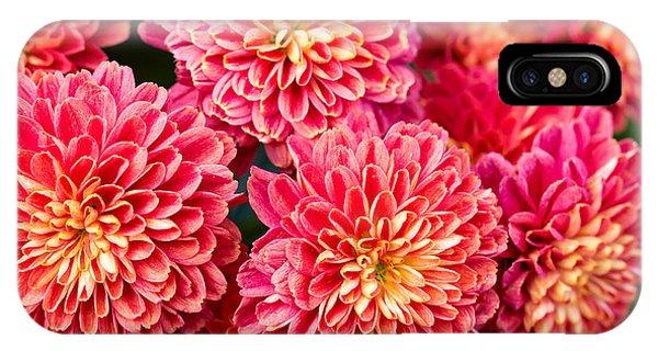 Bouquet iPhone Case - Beautiful Of Red Garden Dahlia Flower by Suwat  Wongkham