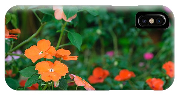 Botanical Garden iPhone Case - Beautiful Orange Flower, Naturally by Pongmoji