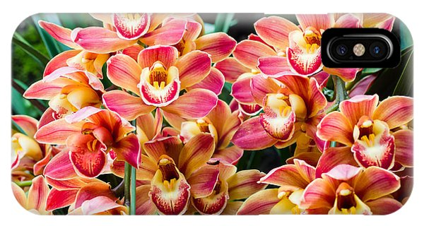 Bouquet iPhone Case - Beautiful Orchid - Phalaenopsis by Atiger