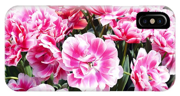 Blossom iPhone Case - Beautiful Pink Tulips In The Spring Time by Lukakikina