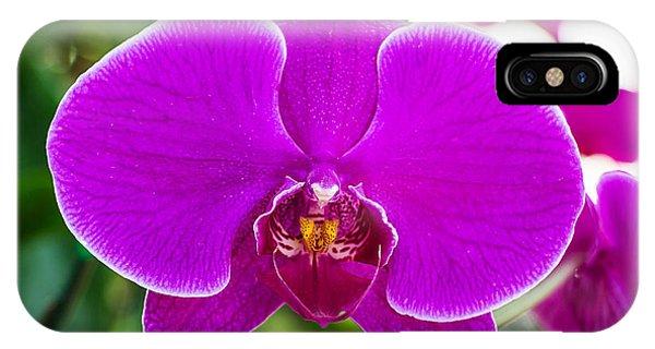 Bouquet iPhone Case - Beautiful Purple Orchid Flowers by Daimond Shutter