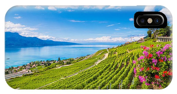 Ripe iPhone Case - Beautiful Scenery With Rows Of Vineyard by Canadastock