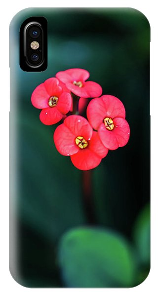 Beautiful Summer Flowers IPhone Case