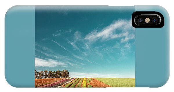 IPhone Case featuring the photograph Beautiful Tulip Farm At The Table Cape In Tasmania. by Rob D