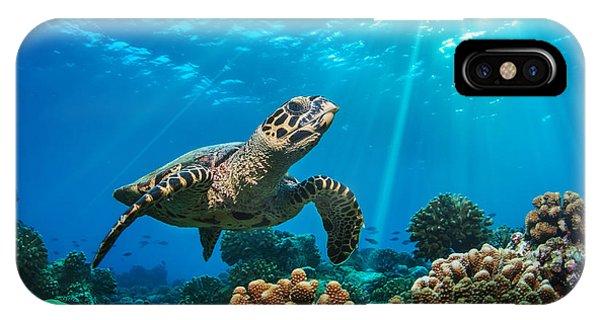 Barrier Reef iPhone Case - Beautiful Underwater Postcard by Willyam Bradberry