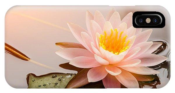 Aquatic Plants iPhone Case - Beautiful  Waterlily Or Lotus Flower by Zhao Jiankang