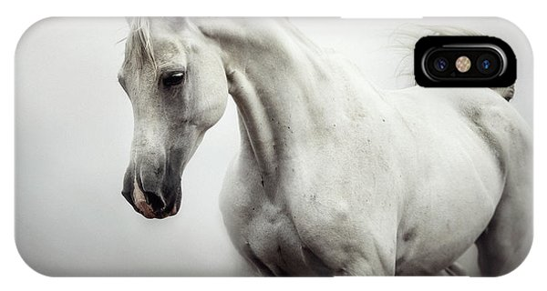 IPhone Case featuring the photograph Beautiful White Horse On The White Background by Dimitar Hristov