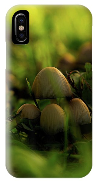 Beauty Of Fungus IPhone Case
