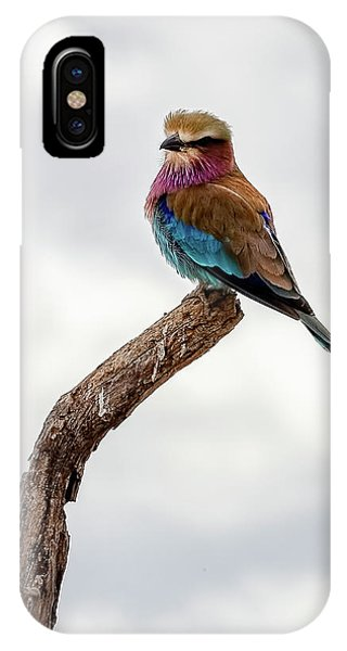 IPhone Case featuring the photograph Beauty With Wings, The Lilac Breasted Roller by Kay Brewer