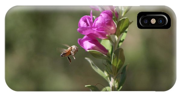 Bee Flying Towards Ultra Violet Texas Ranger Flower IPhone Case