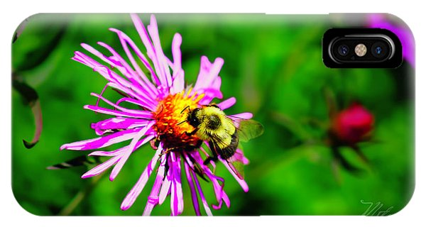 IPhone Case featuring the photograph Bee On Purple Flower by Meta Gatschenberger